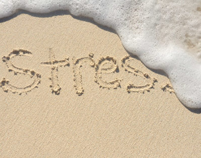 5 Easy Methods for Elders to Naturally Relieve Stress
