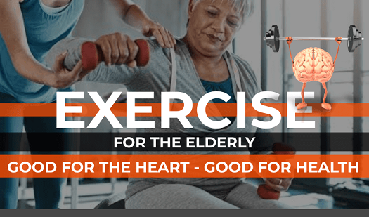Exercise for the Elderly [Infographic]